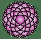 chakra-purple